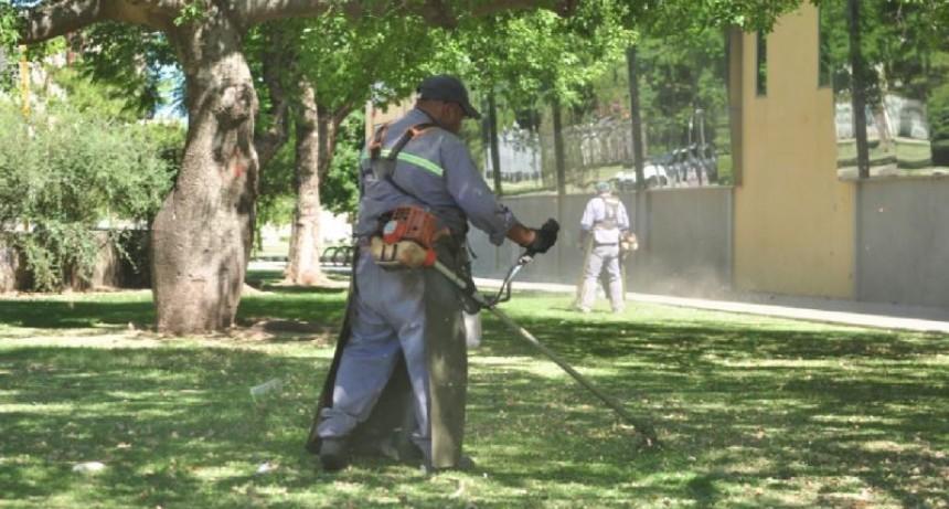El municipio intensifica tareas de mantenimiento de espacios verdes