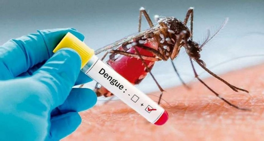 Detectaron dos nuevos casos de dengue no autóctono en la provincia