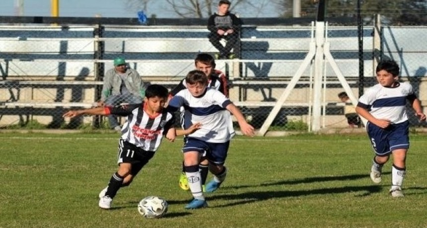 Baby Fútbol: comienza el Torneo Apertura