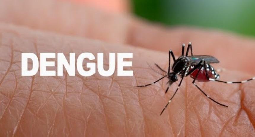Salud advierte por nuevos casos de dengue